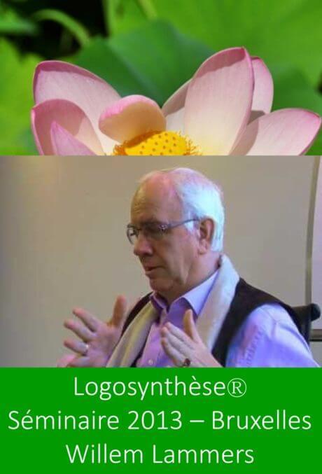 séminaire logosynthèse willem lammers bruxelles 2013 psychologie énergétique formation